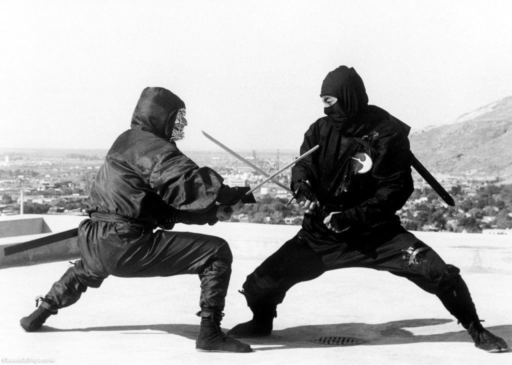10 Amazing Facts You Didn't Know About Ninjas