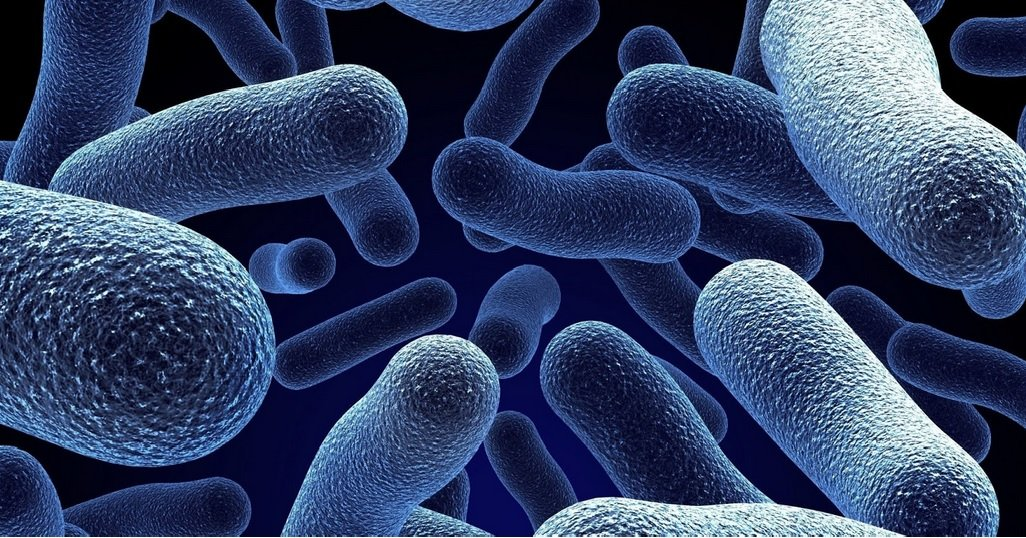 10 Weird Facts About Bacteria You Probably Don't Know
