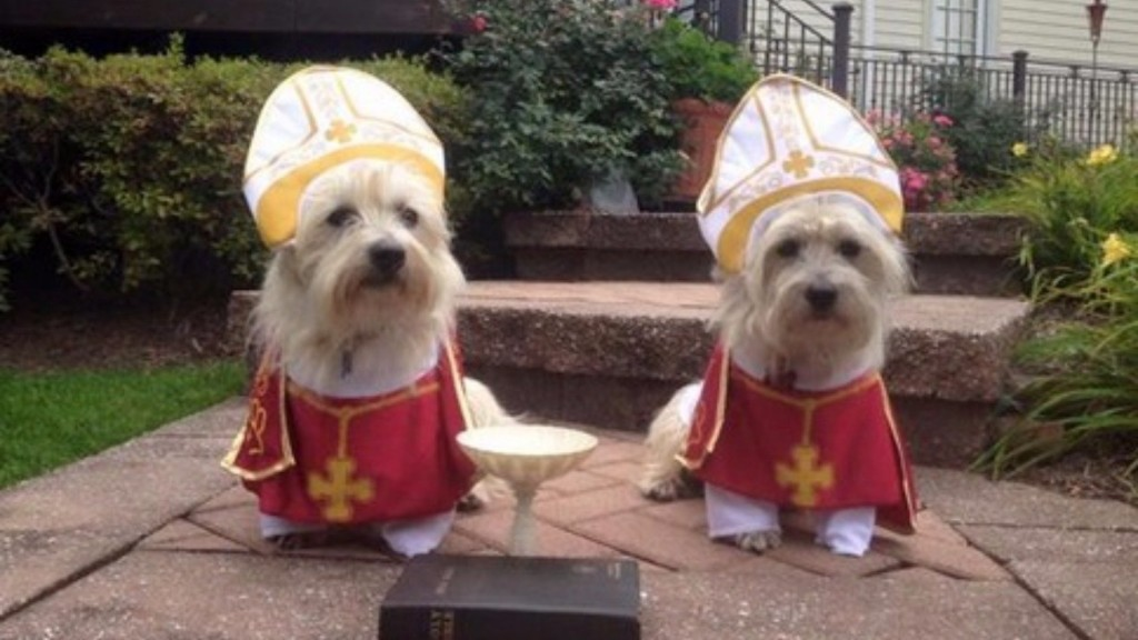 Pope's Visit To United States Triggers Dog Costume Craze