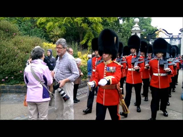 Tourist Trampled By Queen's Guard After Standing In Their Path