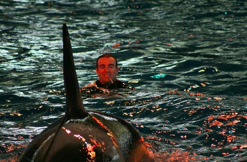10 Of The Worst Accidents To Ever Occur At SeaWorld