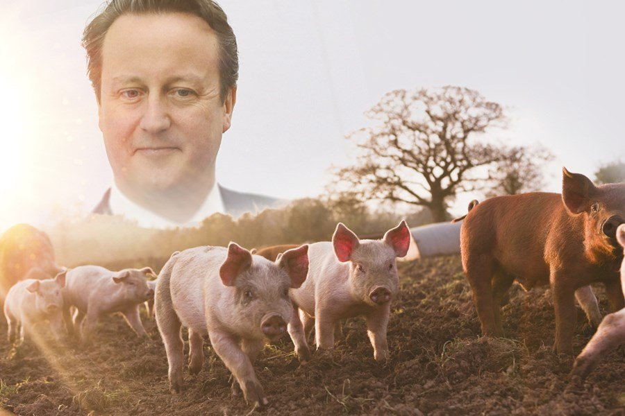 British Prime Minister Allegedly Stuffed His Penis Into Dead Pig's Mouth