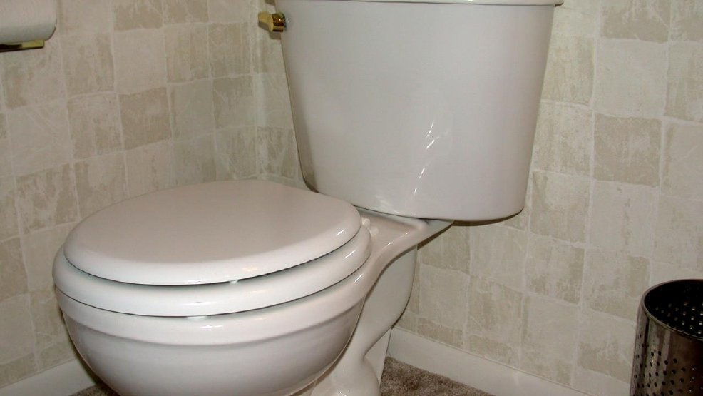 Craigslist Founder Pays $10,000 For A Composting Toilet