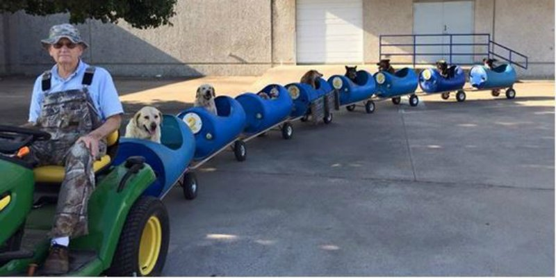 80-Year-Old Man Builds Train For Rescued Dogs And Takes Them For Fun Rides