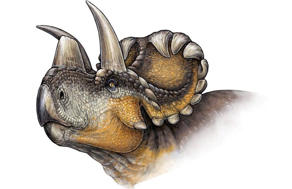 Scientists Uncover a Brand New Horned Dinosaur