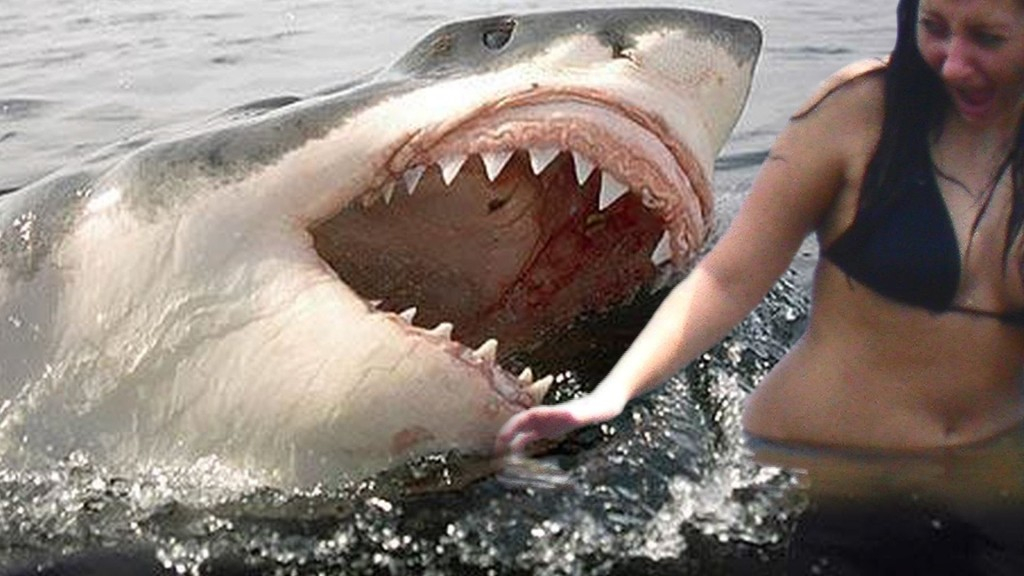 10 Most Unbelievable Stories Involving Shark Attacks
